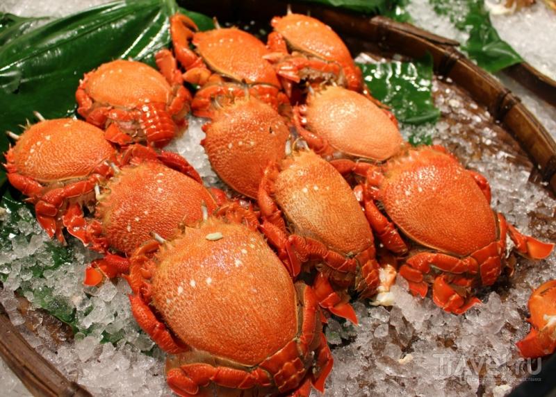 Рынок морепродуктов в Тайбэе / Тайвань