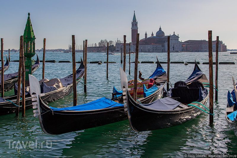 Венеция с высоты колокольни Сан-Джорджо / Фото из Италии