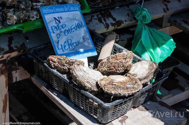 """Франция. Устричное королевство. Cancale - """"Oyster Capital"""" / Франция"""