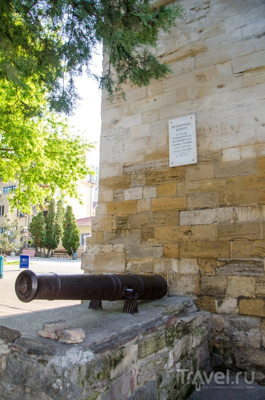 Старинные орудия у ворот