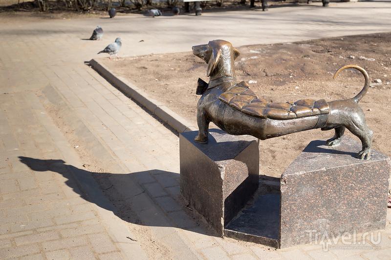 Зеленогорск -- петербургский курорт / Фото из России