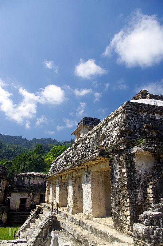 Путешествие по Мексике. Катемако, Вильяэрмоса, Паленке, Кампече / Фото из Мексики
