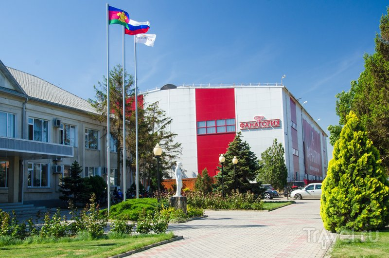 """Завод """"Фанагория"""" входит в число крупнейших производителей вина в России"""