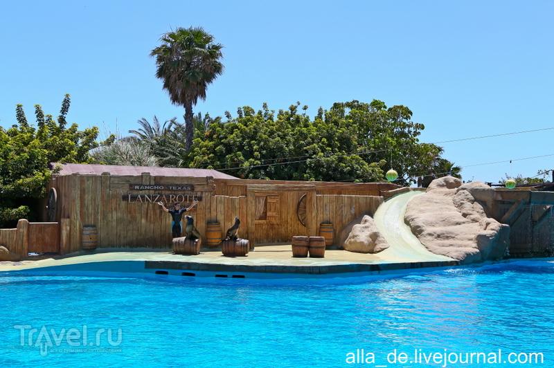Канарский остров Lanzarote. Rancho Texas Park / Испания