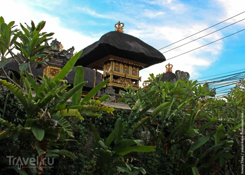 Вся правда об Убуде / Индонезия