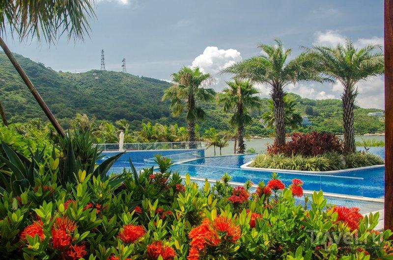 Яркие цвета тропического отдыха / Фото из Китая