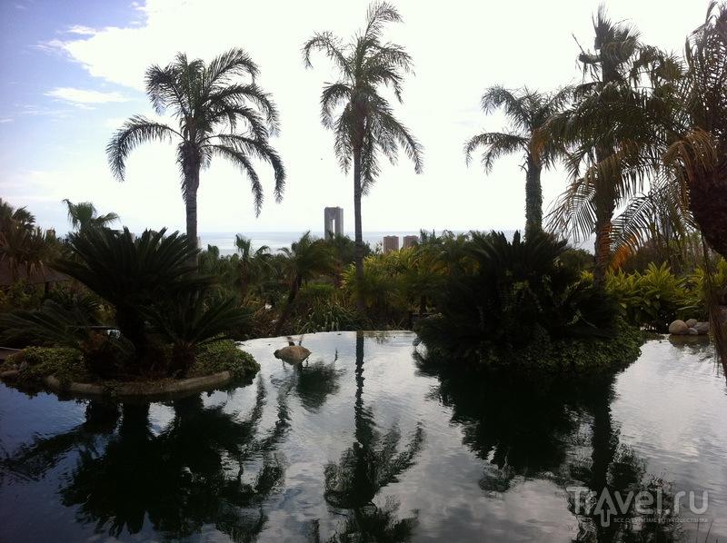 Вид на Бенидорм из отеля Asia Gardens