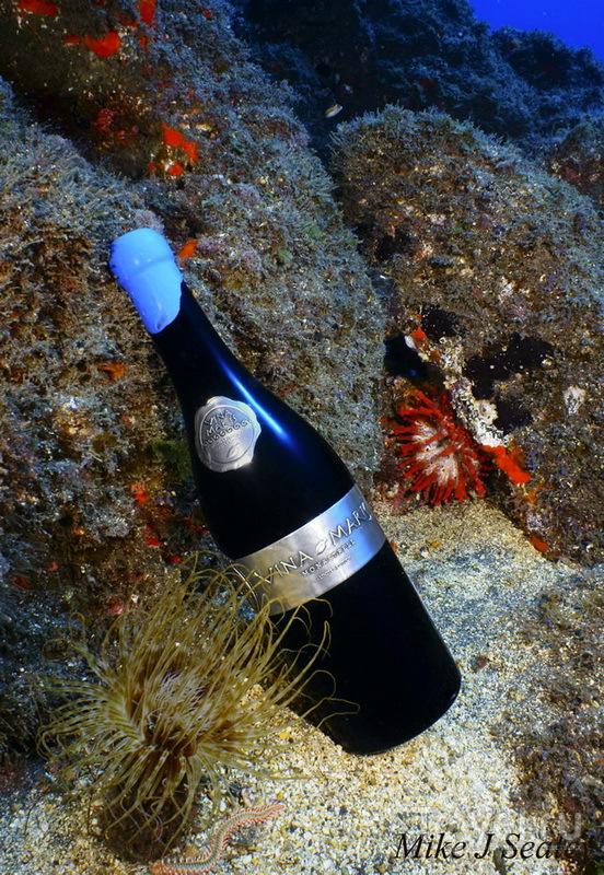 Винодельня под водой