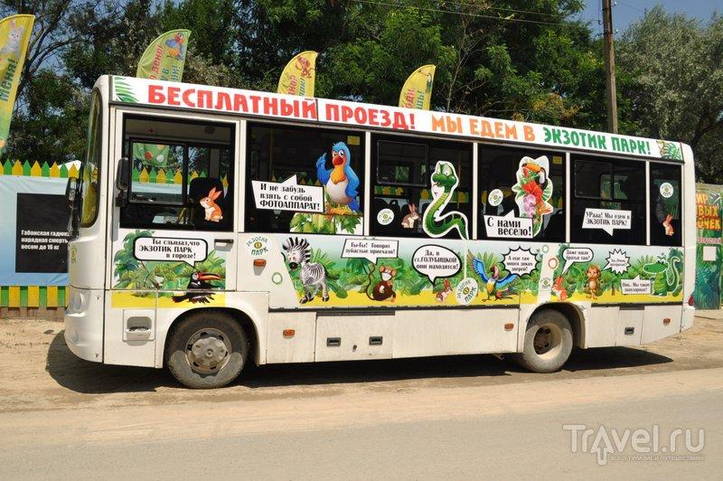 Бесплатный автобус в Экзотик-парк