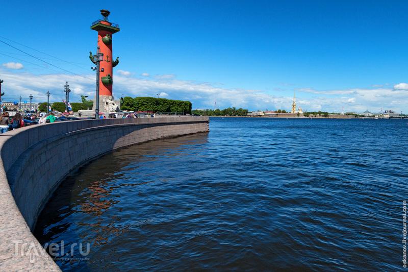 Город на Неве: впечатления иностранца, который на самом деле странец / Фото из России