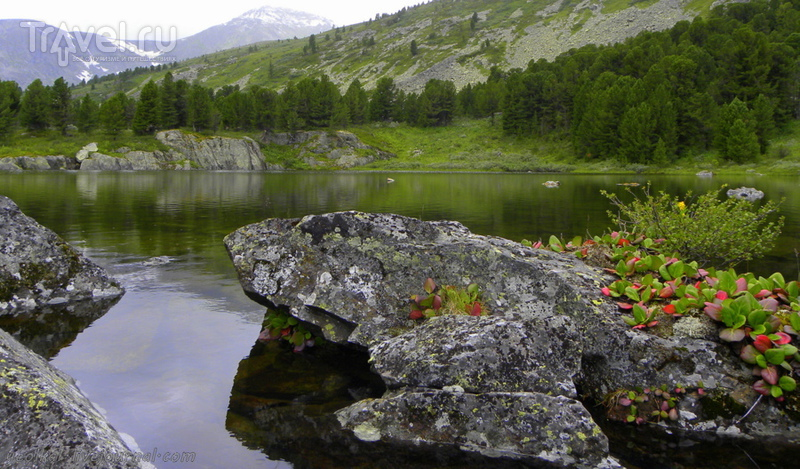 По Горному Алтаю на конях. Бай-Аюкские озера в плохую погоду / Россия