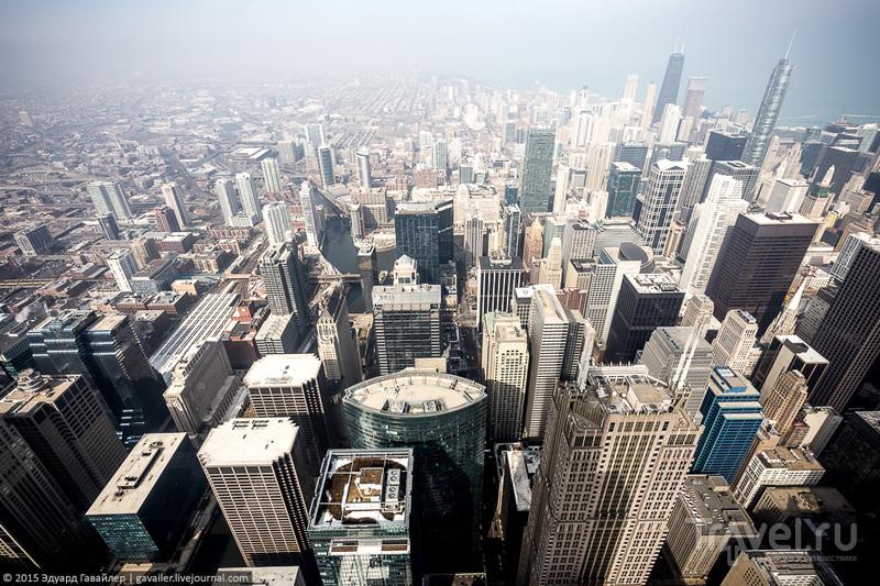 Главная высота Чикаго / Фото из США