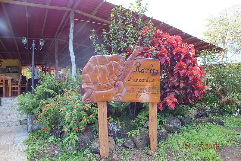 Галапагосы. Остров Санта-Крус / Эквадор