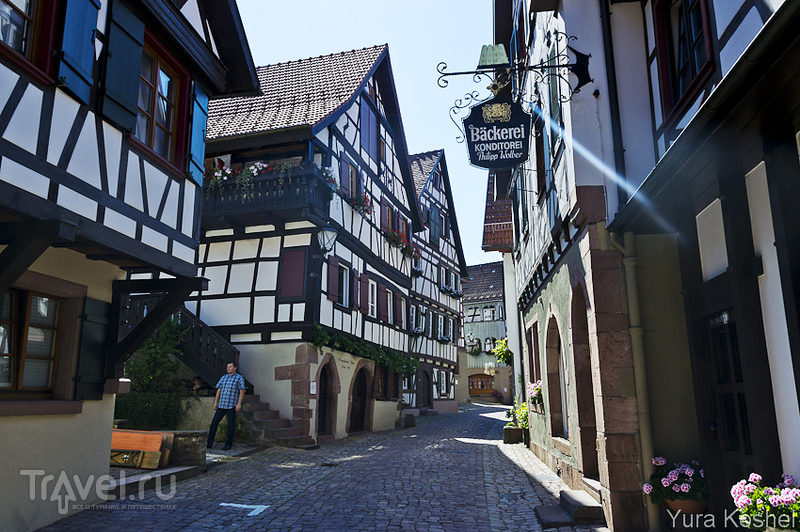 Шварцвальд / Фото из Германии