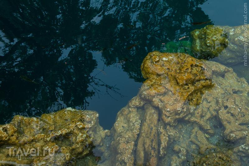 Поездка по Юкатану. Лагуна Бакалар / Фото из Мексики