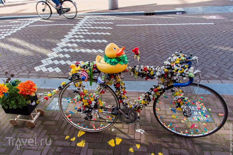 Амстердам, Нидерланды: прогулки по улицам / Фото из Нидерландов