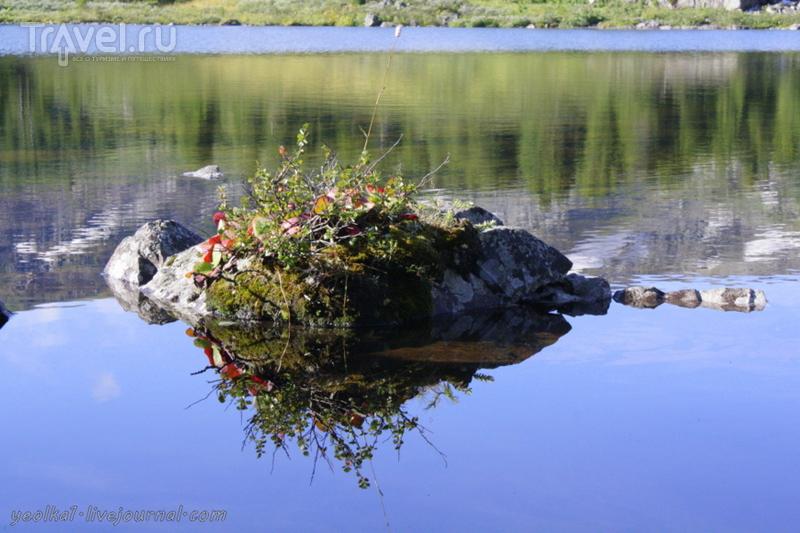 По Горному Алтаю на конях. Бай-Аюкские озера солнечным утром / Россия