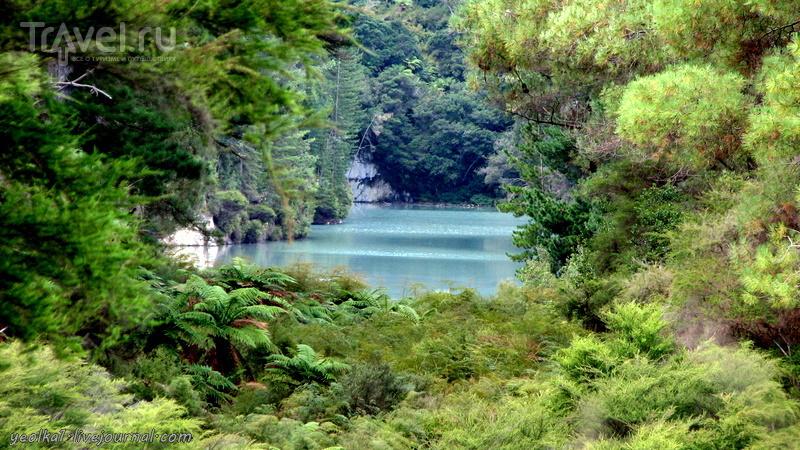 В стране антиподов. Wai-O-Tapu. Бульки, бурболки, шипелки и ворчалки / Новая Зеландия