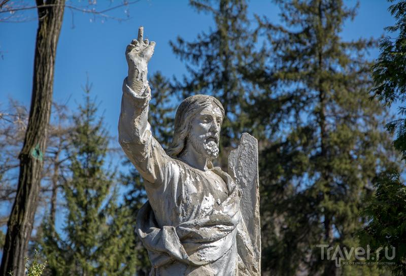Львовское. Кладбище, которое парк / Фото с Украины