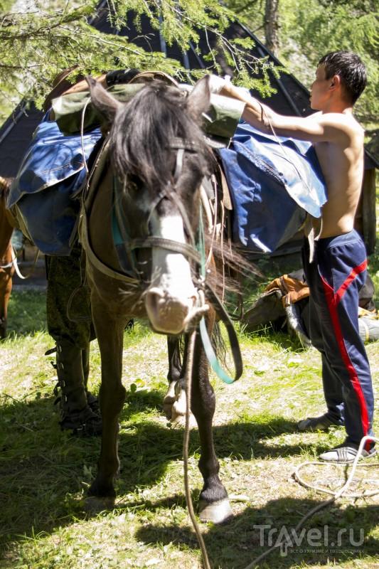 Путешествие по Алтаю на конях / Россия