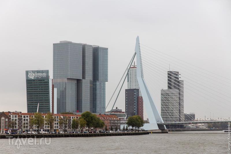 Роттердам, Нидерланды: прогулки по улицам / Нидерланды