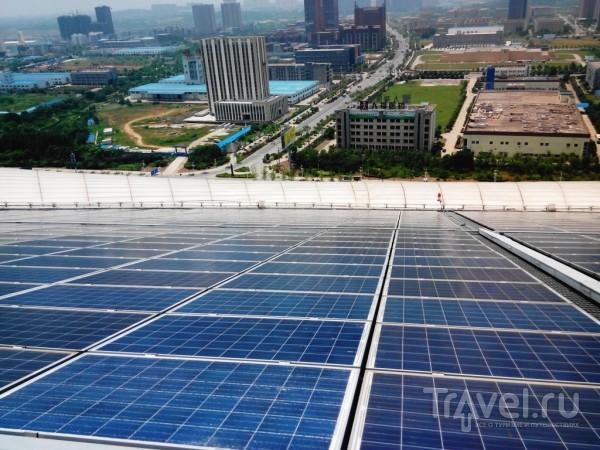 Символ города будущего - здание в виде цветка Каллы / Китай