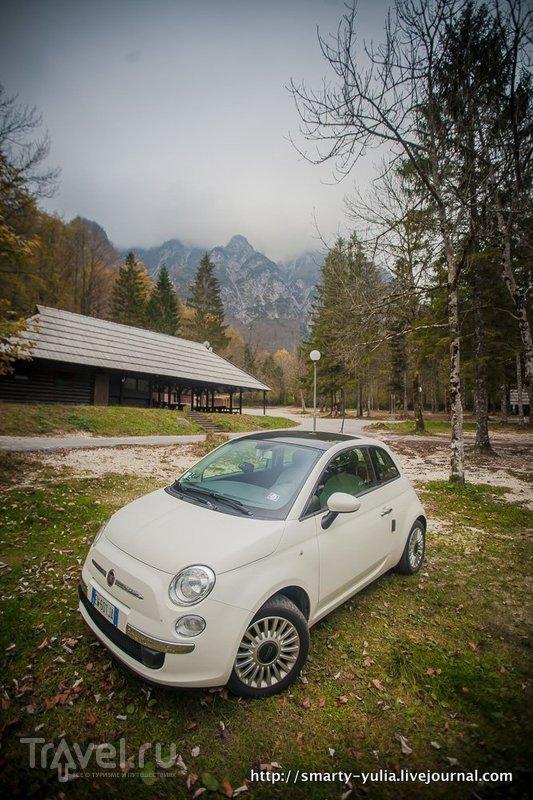 Словения: озеро Бохинь / Словения
