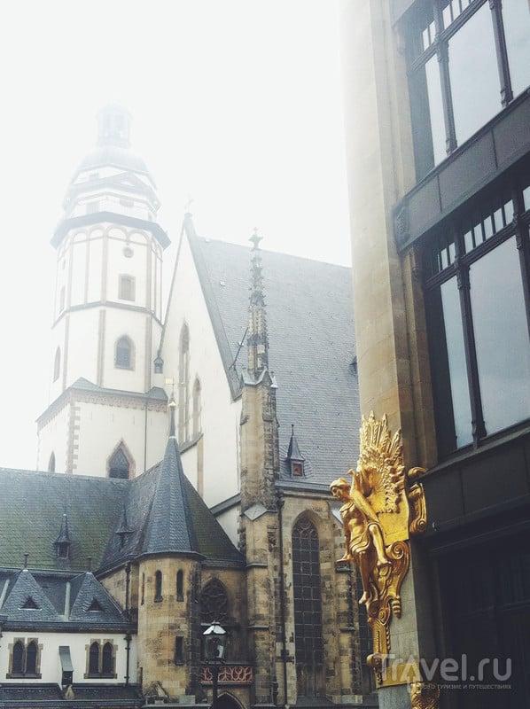 Большие выходные в Берлине: куда поехать на один день из города? / Германия