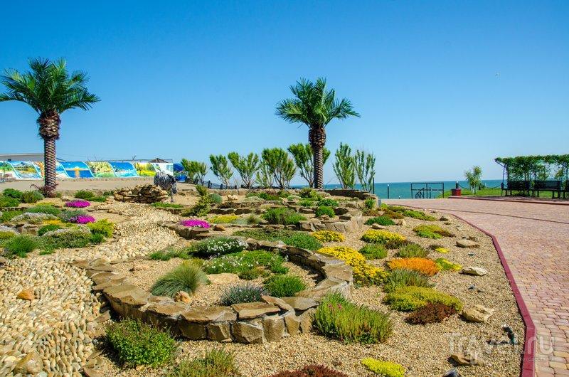 Поддерживать цветы и зелень под палящим степным солнцем действительно непростая задача