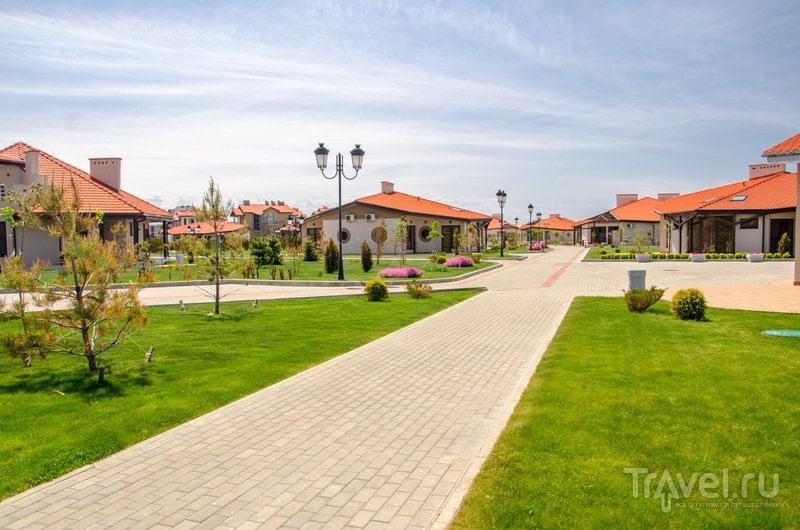 Деревня поделена на улицы, названные в честь высаженных на ней деревьев