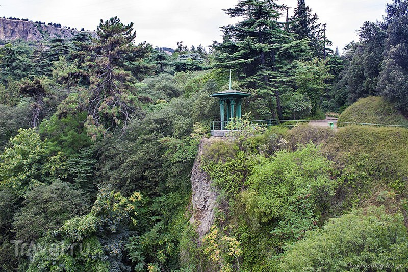 Рике, Нарикала и Ботанический сад / Фото из Грузии