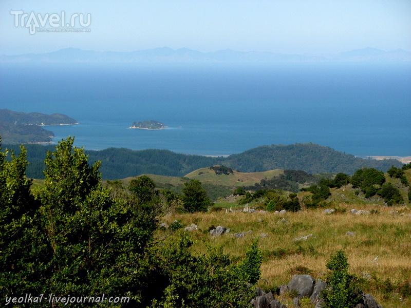 В стране антиподов. На севере Южного острова. Заповедник Абель Тасман. В пене брызг / Новая Зеландия