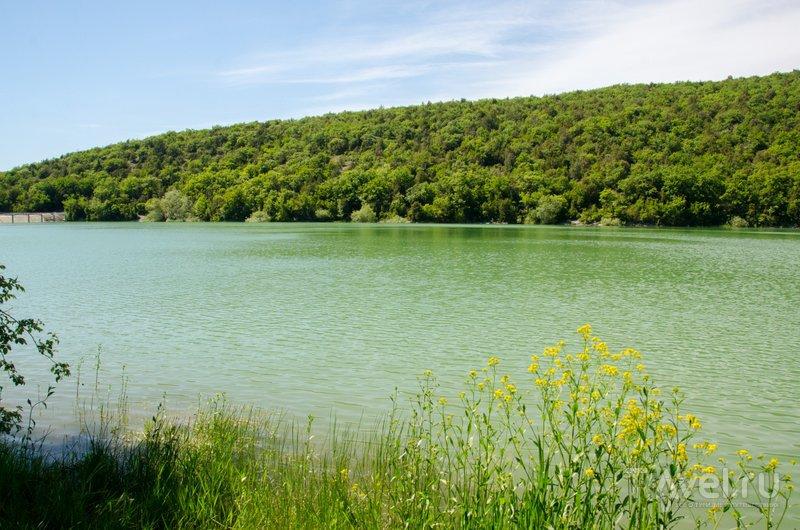 Воды из пруда раньше использовали для полива полей и виноградников
