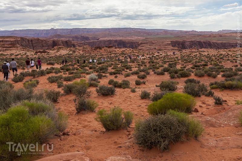 США. Лето в парках. Horseshoe Bend и Marble Canyon / Фото из США