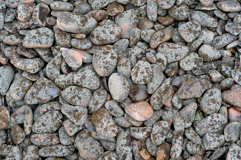 О путешествии на Большой Шантар. Время собирать камни / Фото из России