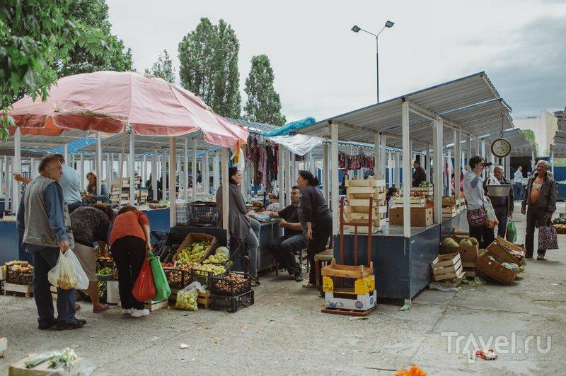 Косовска-Митровица / Албания