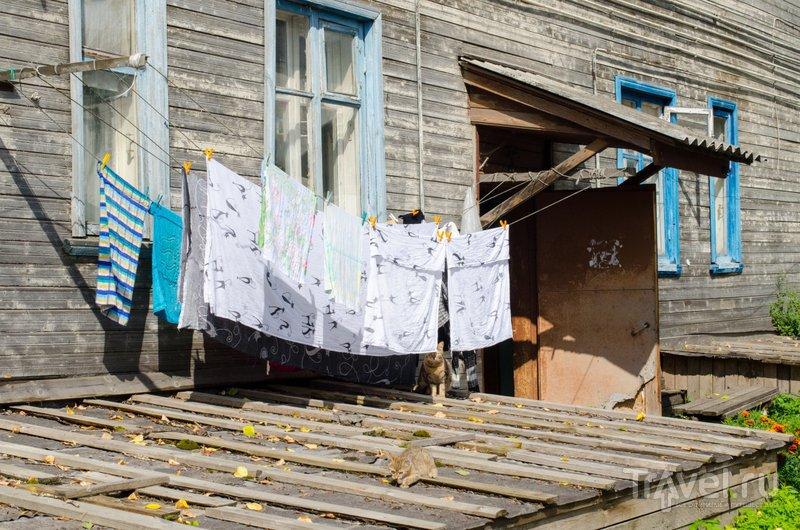 В каргопольском дворике / Фото из России