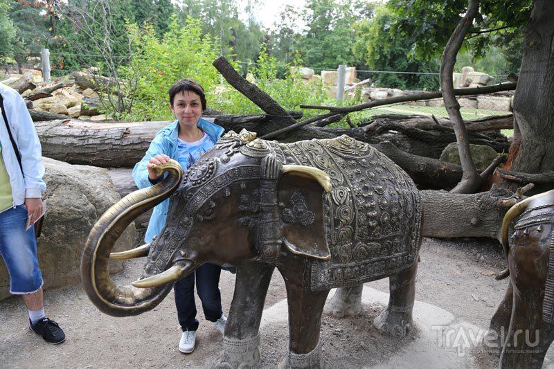 Пражский зоопарк / Чехия