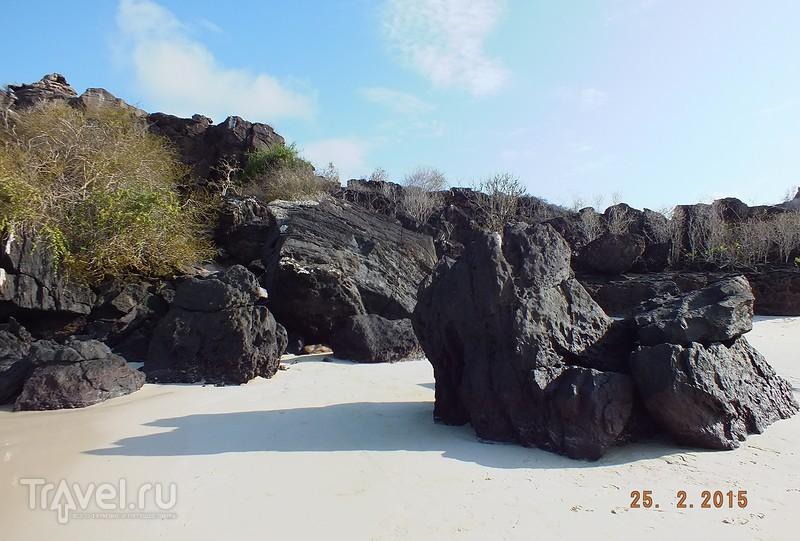 Галапагосы. Остров Сан-Кристобаль. Экскурсия по острову / Эквадор