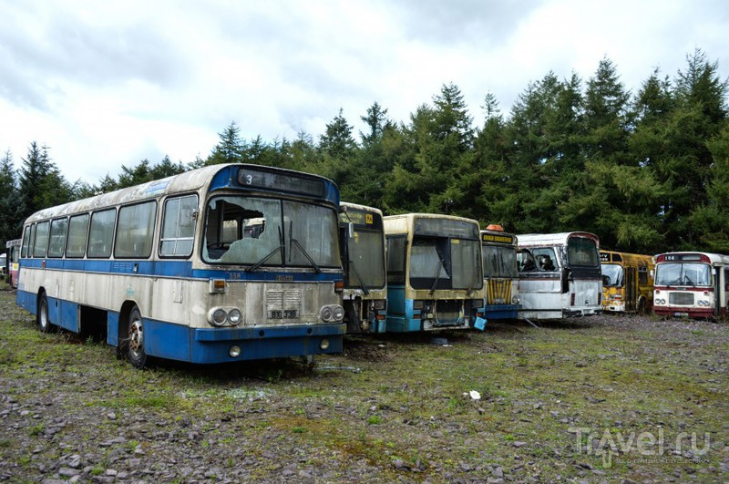 Достойная экспозиция старых автобусов около города Корк / Ирландия