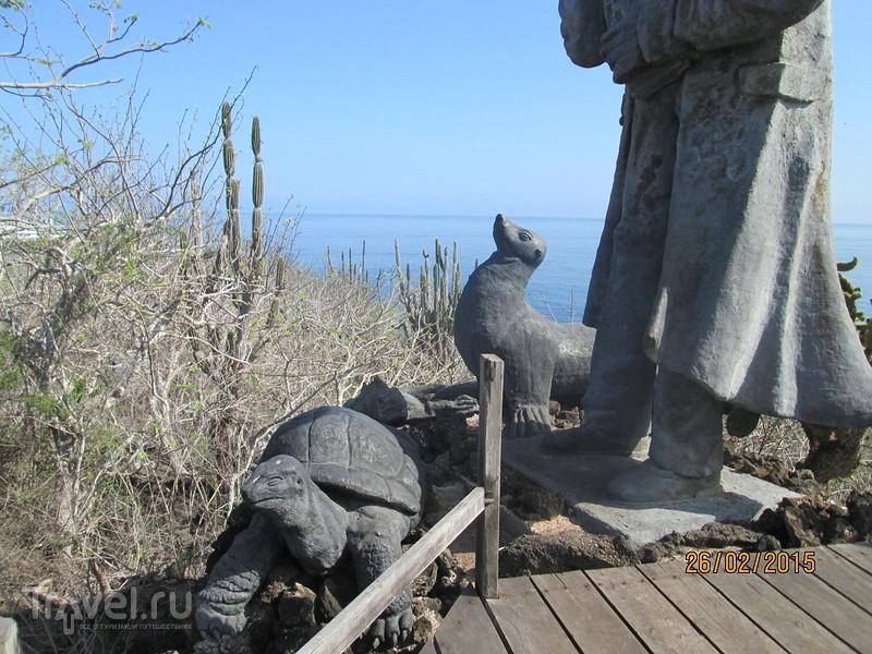 Галапагосы. Остров Сан-Кристобаль. Нижние смотровые площадки / Эквадор