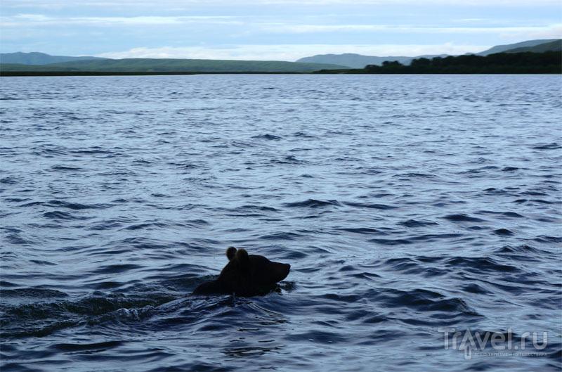 На озере Азабачьем / Фото из России