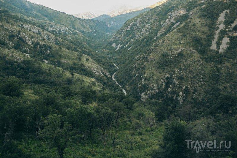 На поезде в Черногорию / Сербия