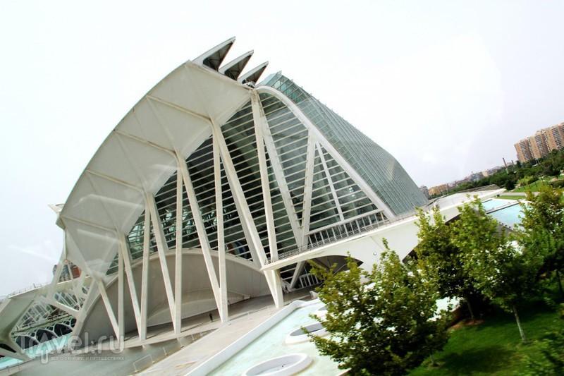 Синтез искусства и науки / Испания