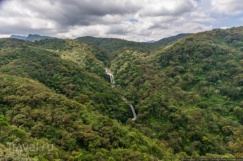 Шри-Ланка. Поездом сквозь чайные плантации / Фото со Шри-Ланки