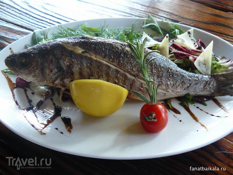 Байкальская рыба