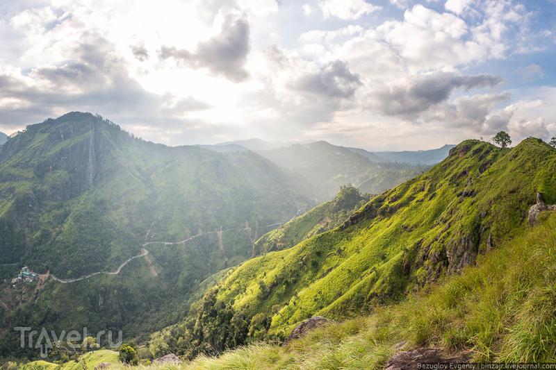 Шри-Ланка. Восхождение на Малый Пик Адама / Фото со Шри-Ланки