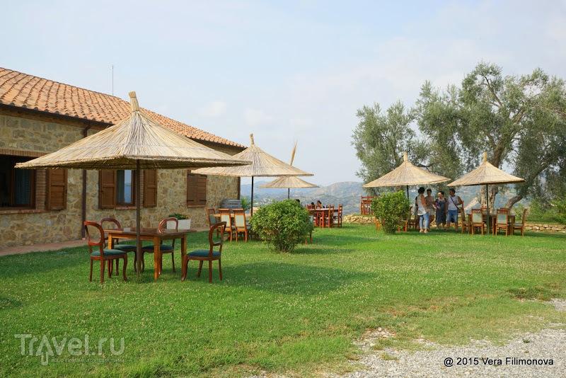 Винодельня Кокомани (Kantina Kokomani) рядом с Дурресом / Фото из Албании