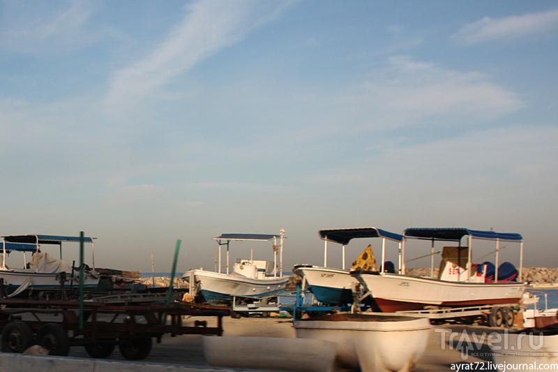 Здесь всегда ловили рыбу и добывали жемчуг / ОАЭ