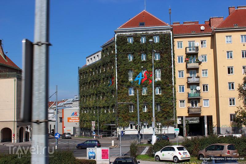 Не европейская Вена / Фото из Австрии